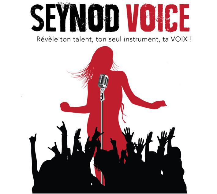 Seynod Voice 2016, top départ avec les sélections !