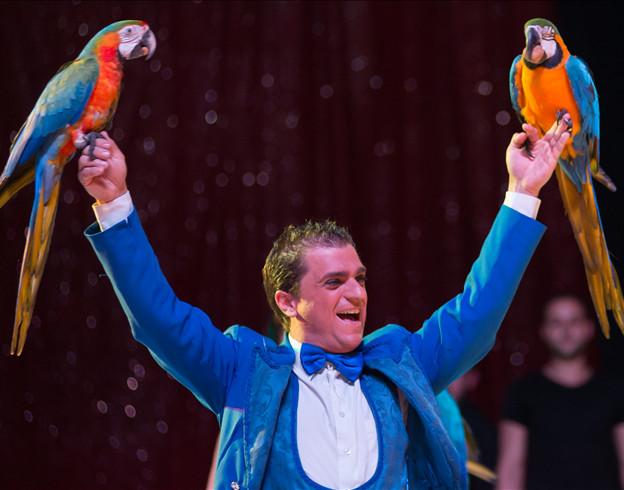 Les virevoltants perroquets de Juan Gutierrez / Copyright Le Grand Cirque Sur l'Eau