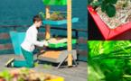 Avec UP&GREEN tout le monde peut avoir un vrai jardin chez soi !