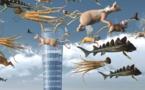Découvrez l'expo projection INVERSO MUNDUS au Haras d'Annecy