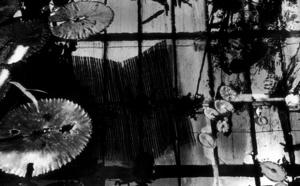 Exposition des photographies de Pierre Vallet