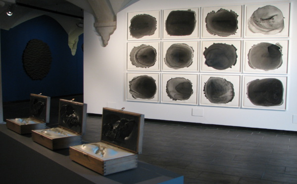 Exposition SURROUNDED BY WATER de Thomas Tronel-Gauthier