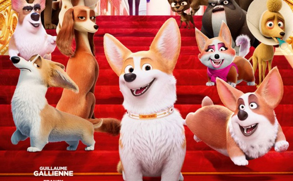 « Royal Corgi », scandalously drôle !